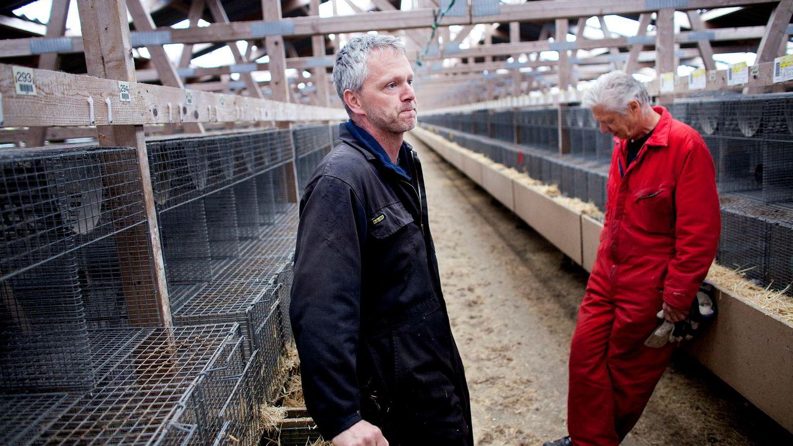 Mink-oppretter Bength Oftedal (48) og faren Ove Oftedal (75) mener det vil bli vanskelig å starte annen virksomhet med den kompensasjonsordningen regjeringen har foreslått når næringen legges ned.