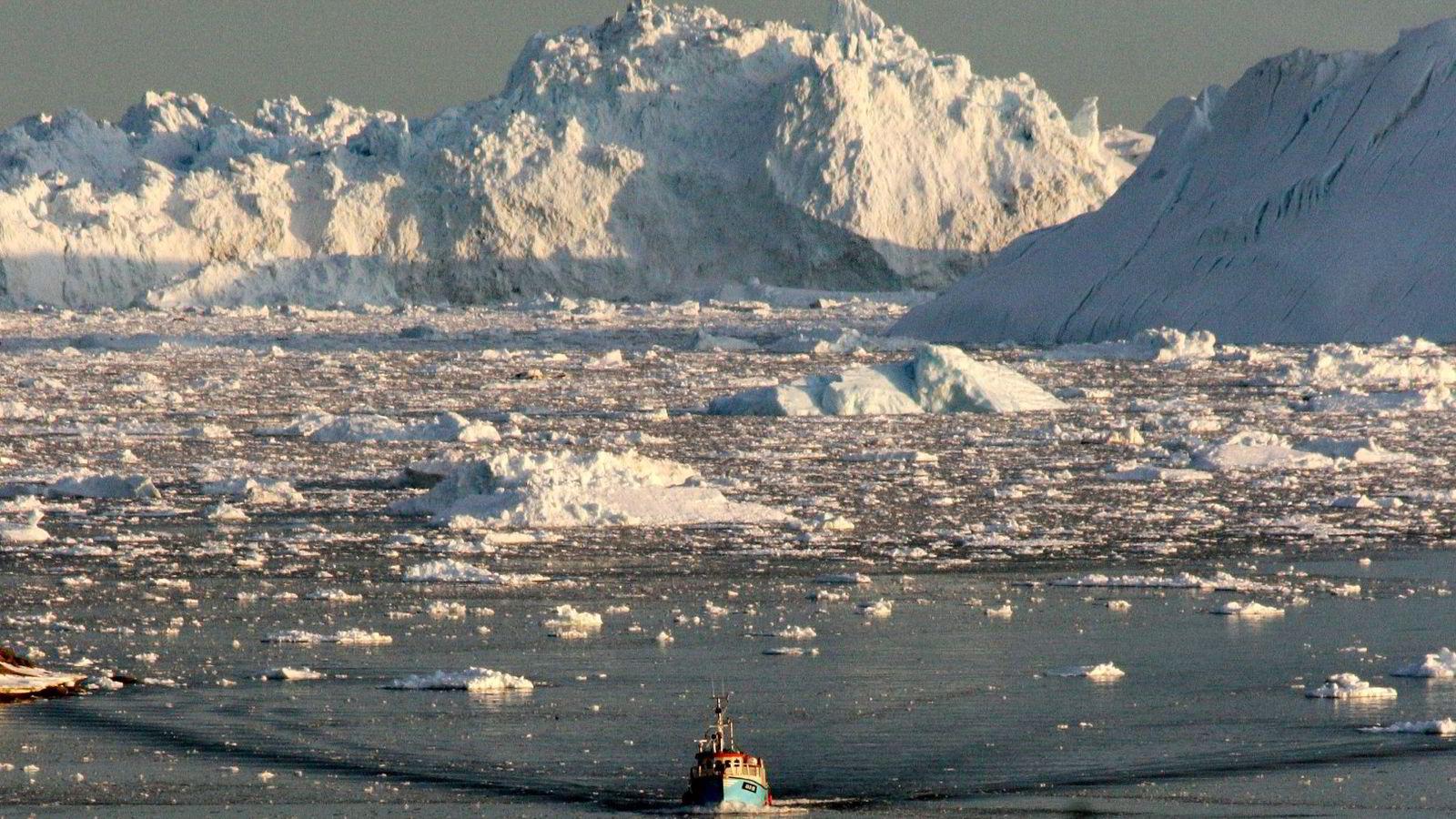 Det har forsvunnet mye innlandsis på Grønland siden år 1900. Bildet er tatt i  Ilulissat-fjorden på vestkysten av Grønland. Foto: Steen Ulrik Johannessen/AFP Photo/NTB scanpix
