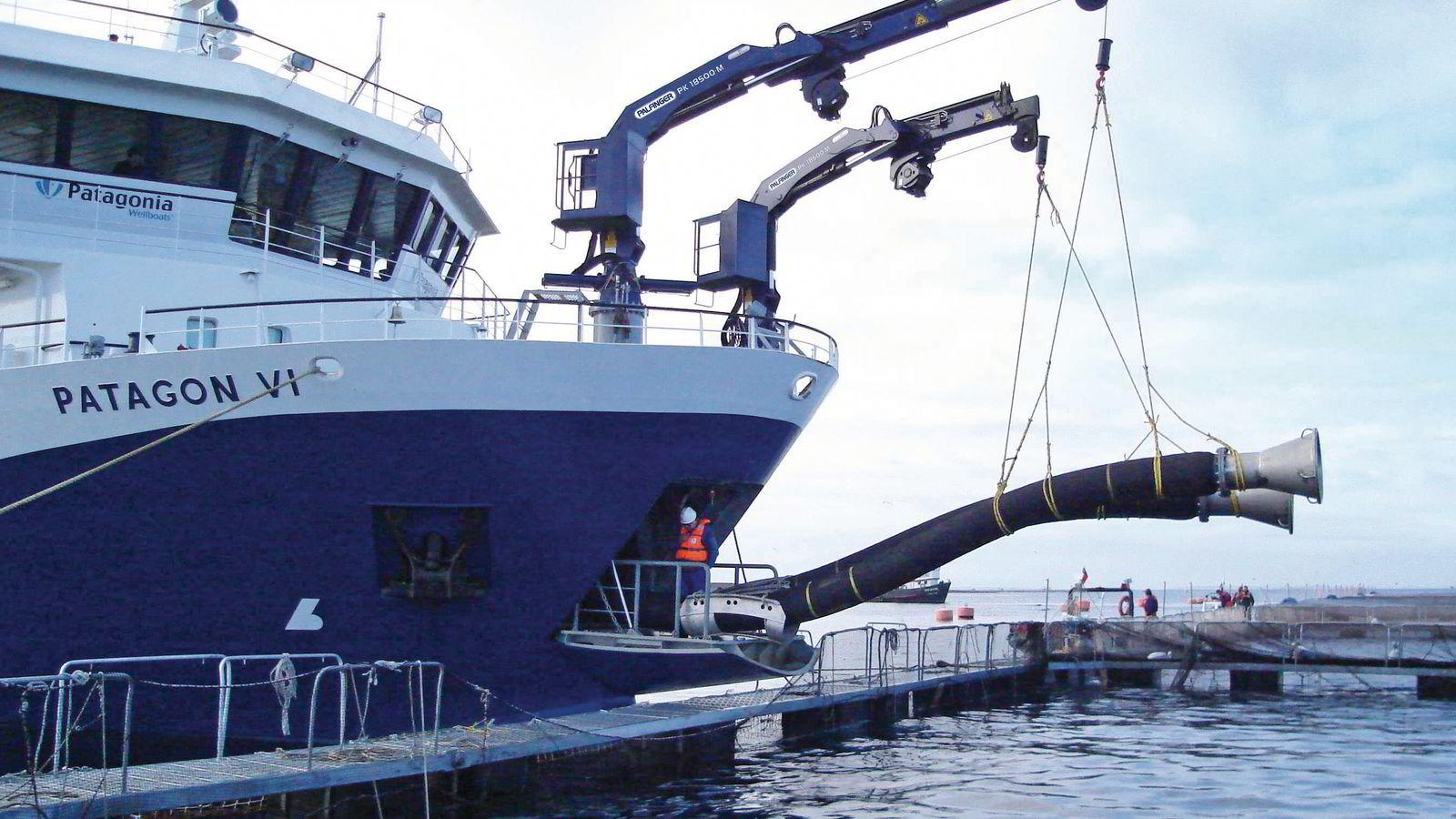 Kranprodusenten Palfinger Marine leverer blant annet kraner til brønnbåter, som her på bildet.