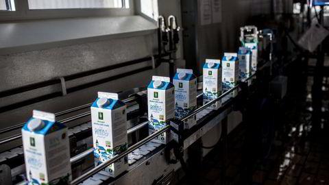 På bildet økologisk melk fra Rørosmeiereiet. Foto: Adrian Nielsen