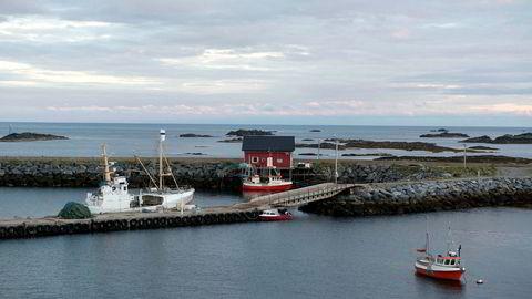 På kontinentalsokkelen utenfor Lofoten og Vesterålen oppgraderes nå havobservatoriet Love med ytterligere 37 kilometer kabel og flere observasjonspunkter for kontinuerlig overvåkning med kamera, strømmålere og ekkolodd, skriver artikkelforfatterne.