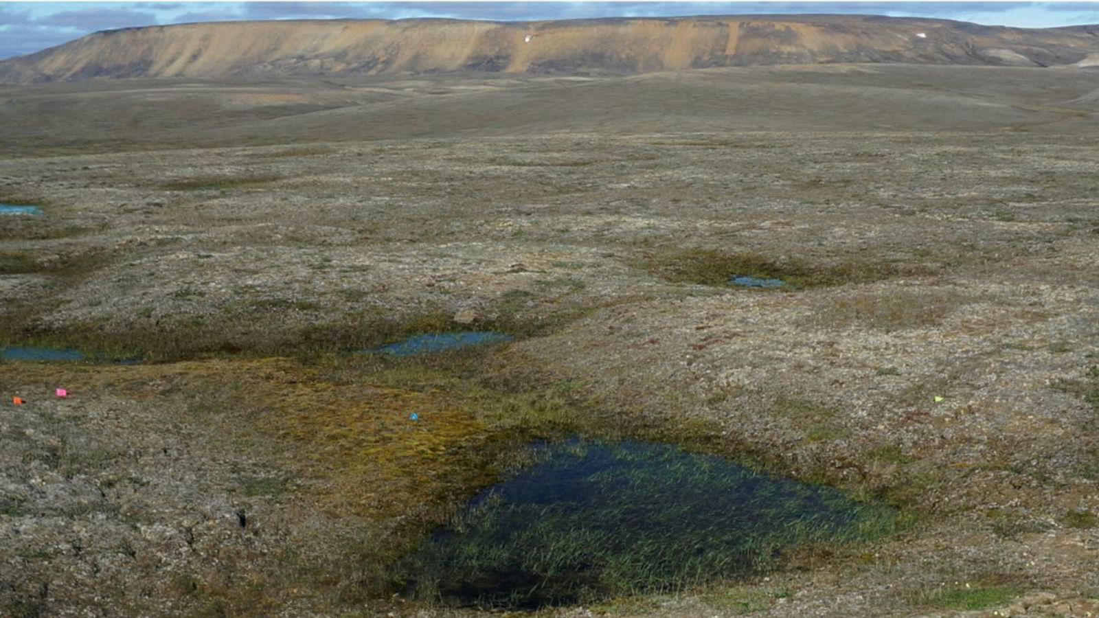 Permafrost er i ferd med å tine ved Mould Bay i Canada. Det resulterer i, ved siden av klimagassutslipp, store setningsskader med fordypninger på opptil en meter.