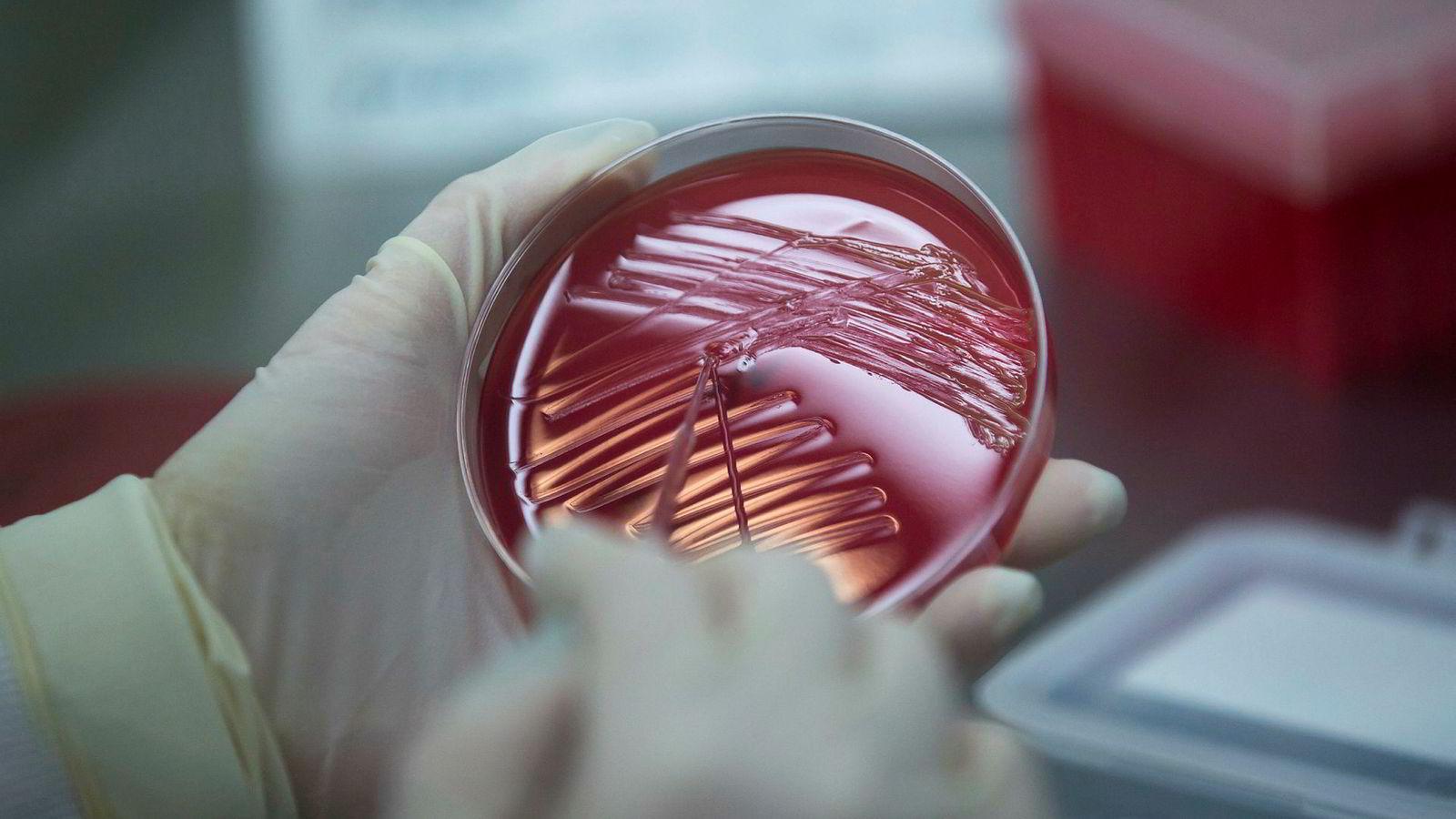 Antibiotikaresistens er fortsatt en alvorlig trussel i EU.