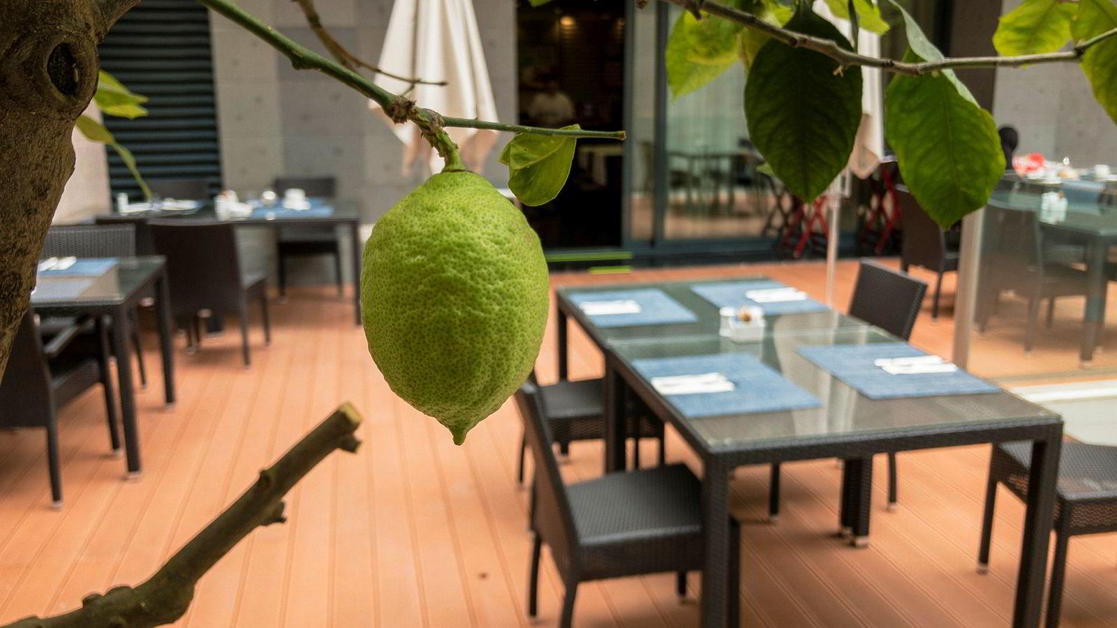 Frokosten kunne nytes utendørs i rolige omgivelser.