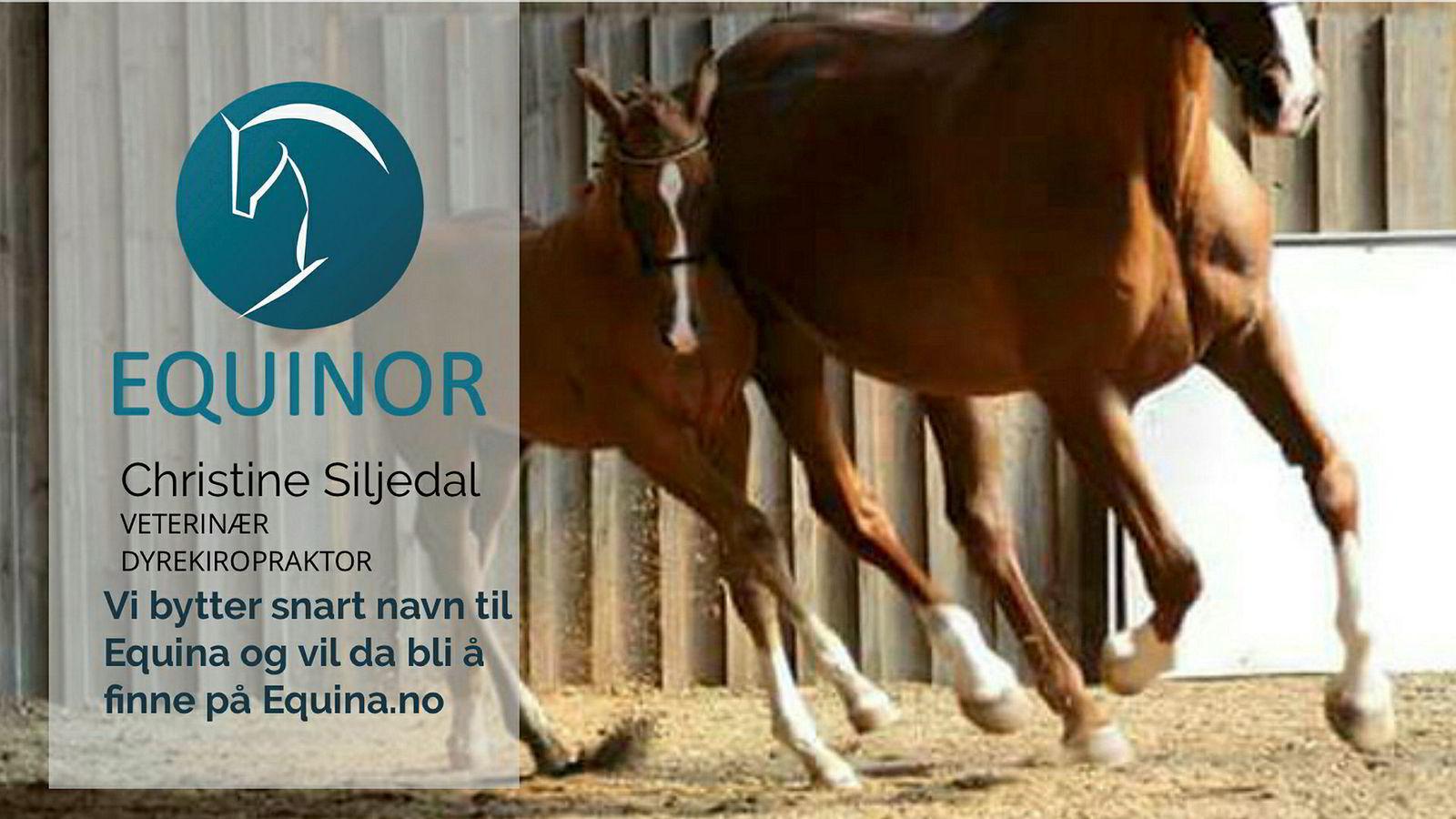 Skjermdump fra nettsiden Equinor.no, som er eid av hestekiropraktor Christine Siljedal Arnesen