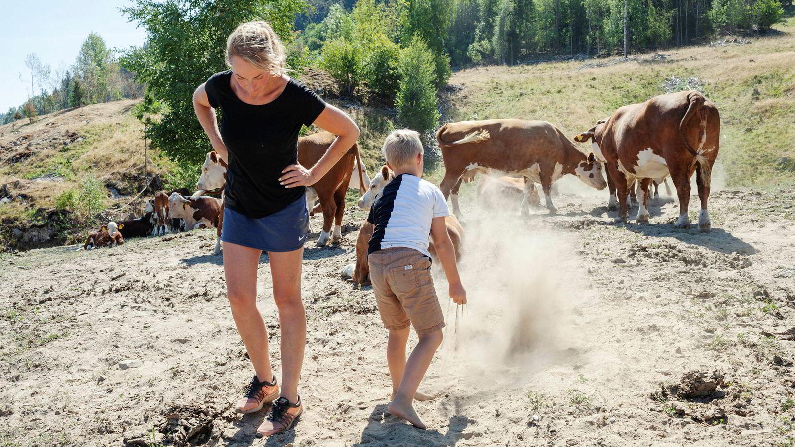 Ann Kristin Teksle driver gård i Ulefoss og må sannsynligvis slakte ungdyr på grunn formangelen som er følge av tørken. Her med sønnen Per Johan.