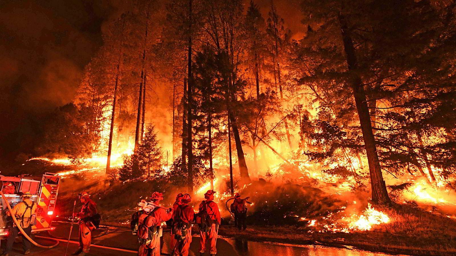 Brannmenn forsøker å få kontroll på Carr-brannen som sprer seg mot byene Douglas City og Lewiston i California. Carr-brannen er den dødeligste av de 17 skogbrannene som herjer den amerikanske delstaten. Både brannmenn og sivile har dødd i brannen. En 70 år gammel kvinne og hennes to oldebarn på fire og fem år omkom da huset deres i Redding forsvant i flammene.