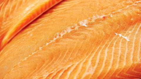 Det å importere enorme mengder laks fra Norge er ikke praktisk, mener en professor ved det marine universitetet i Guangdong.