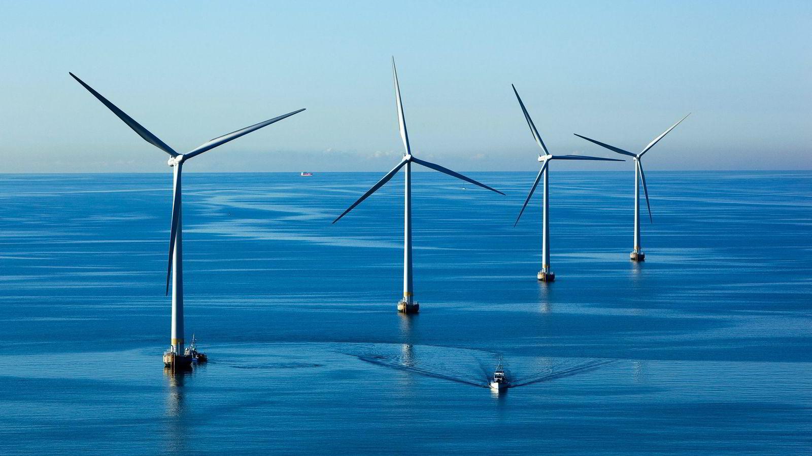 Det å sette opp 100 vindmøller i havet på en kostnadseffektiv måte, kan by på store utfordringer, også for bedrifter som har bred offshorekompetanse, skriver artikkelforfatteren. Her fra Lillgrund vindmøllepark utenfor Malmö.