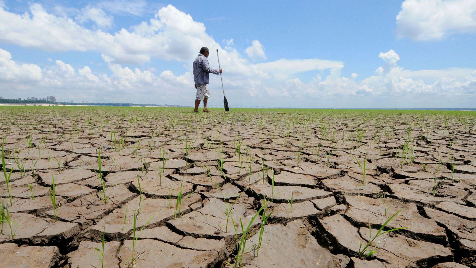 Professor kritiserer FNs klimapanel for å ha nedtonet risikoen ved de pågående klimaendringene. Bildet viser en uttørket del av elven Rio Negro i Brasil som er en stor biflod til Amazonas.