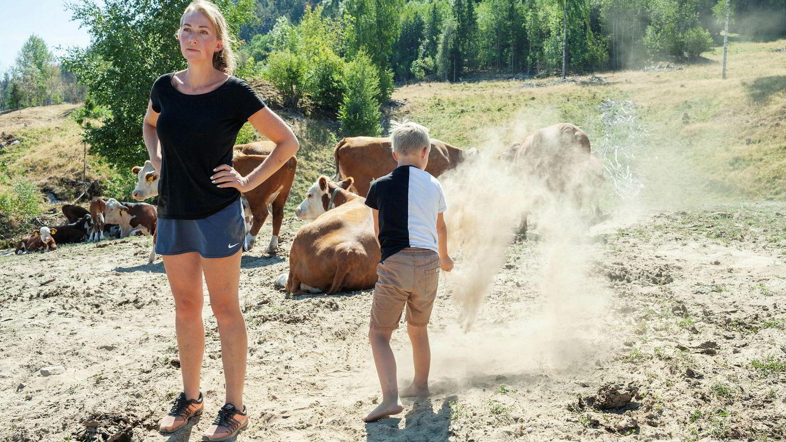 Ann Kristin Teksle driver gård i Ulefoss og er blant de tørkerammede bøndene som sannsynligvis må slakte ungdyr på grunn av fôrmangel. Nå forhandler staten og bøndene om justeringer av jordbruksavtalen.