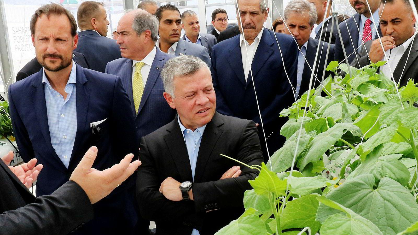 Kronprins Haakon og Jordans Kong Abdullah var med på å åpne demoanlegget stiftelsen Sahara Forest Project startet i Jordan i fjor. Det relaterte aksjeselskapet sliter tungt.