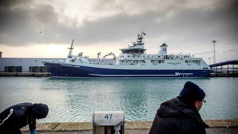 Fiskeriminister Harald T. Nesvik begjærer nå nytt rettsmøte for å stanse slaktebåten «Norwegian Gannet».