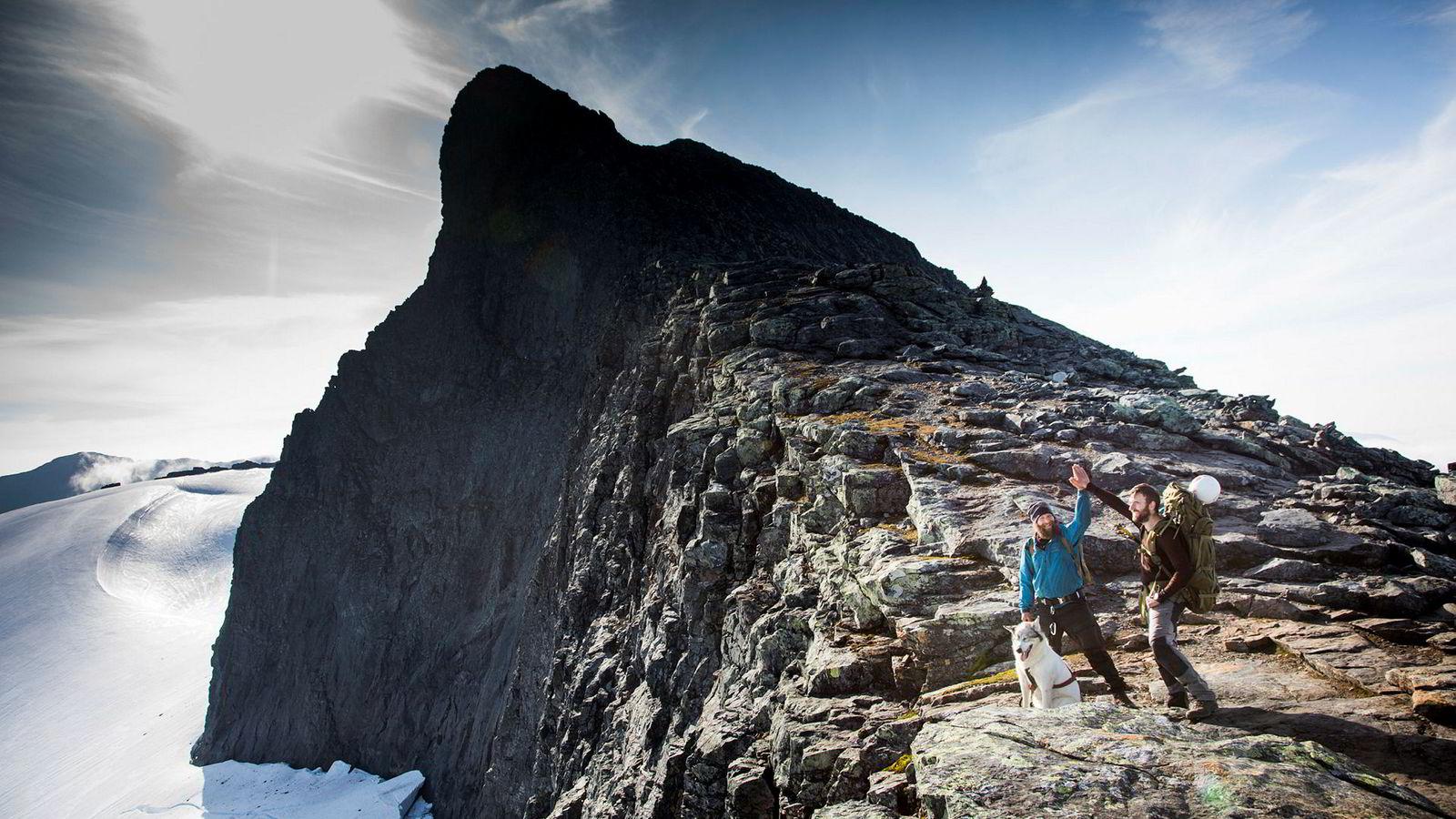 Toppen av Storsylen ruver i bakgrunnen mens  Anders Helstrup (til venstre), kompisen Jan Arne Janssen og hunden Obelix markerer at de har nådd et av turens delmål. Her har de krysset Norge fra havet på Vestlandet til grensen mot Sverige i Midt-Norge.