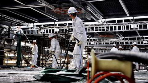 Den økonomiske veksten har avtatt i Asia de siste månedene – ledet av Kina. Det kraftige fallet i oljeprisen er derfor positive nyheter for de fleste asiatiske land. Foto: AP/NTB Scanpix
