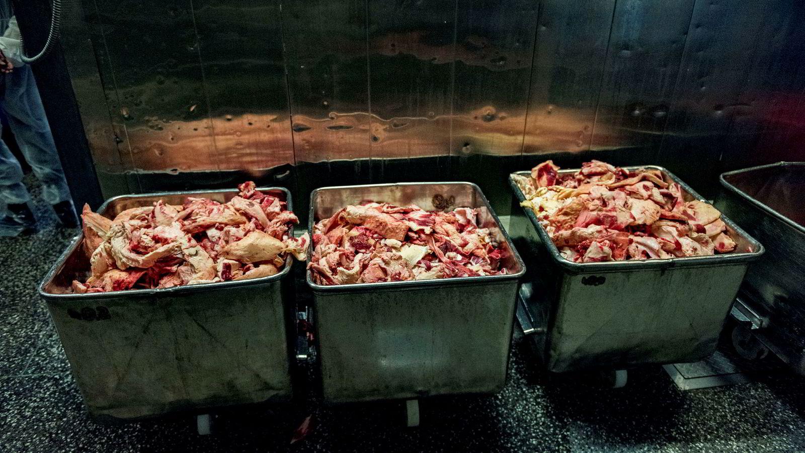 Historisk høye tall for norske reguleringslagre av kjøtt.
