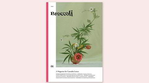 Inn i hampen. – Å lage et gratismagasin er viktig for vårt prosjekt, fordi vi mener at cannabis og cannabismedier burde være tilgjengelige, sier redaktør Anja Charbonneau, om Broccoli – et magasin om cannabis for kvinner. Foto: Broccoli