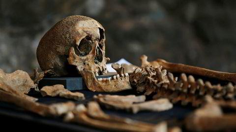 Bakterien i skjelettene fra St. Nikolai-kirkegården er identisk med de bakteriene som finnes i skjeletter fra epidemier i Barcelona, London og Saint-Laurent-de-la-Cabrerisse i Sør-Frankrike fra 1348. Dette skjelettet fra samme århundret ble funnet i London sentrum i 2014.