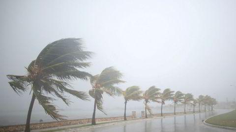 Den tropiske stormen Irma herjer her Cuba og er ventet å nå Florida søndag. Så langt er minst 24 mennesker omkommet og det er ødeleggelser for flere titall milliarder kroner.