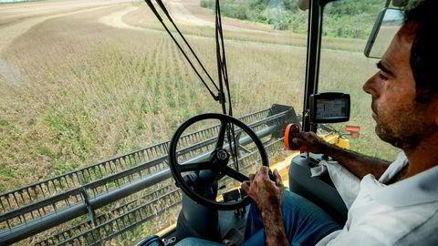 Husdyra våre og fiskeoppdrettet har gjort seg avhengige av proteinet i importert soya fra Brasil. Dette øker selvsagt presset mot regnskogen.
