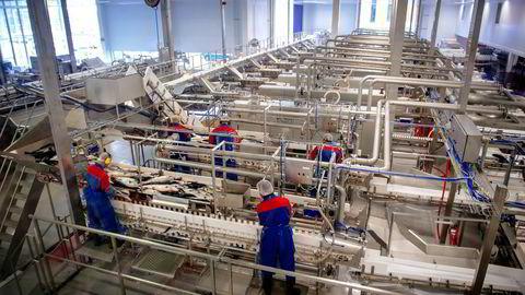 Å redusere skatten på norsk næringsvirksomhet ville styrke norsk verdiskaping, skriver artikkelforfatteren. Foto: Kristian Helgesen,