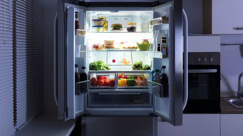 Sirkulærøkonomi handler om å utvikle forretningsmodeller som gjør at det lønner seg å designe produkter av kvalitet. Å lease kjøleskapet istedet for å eie det ville kunne bidra til at produsentene lager skap med bedre levetid, mener artikkelforfatterne.