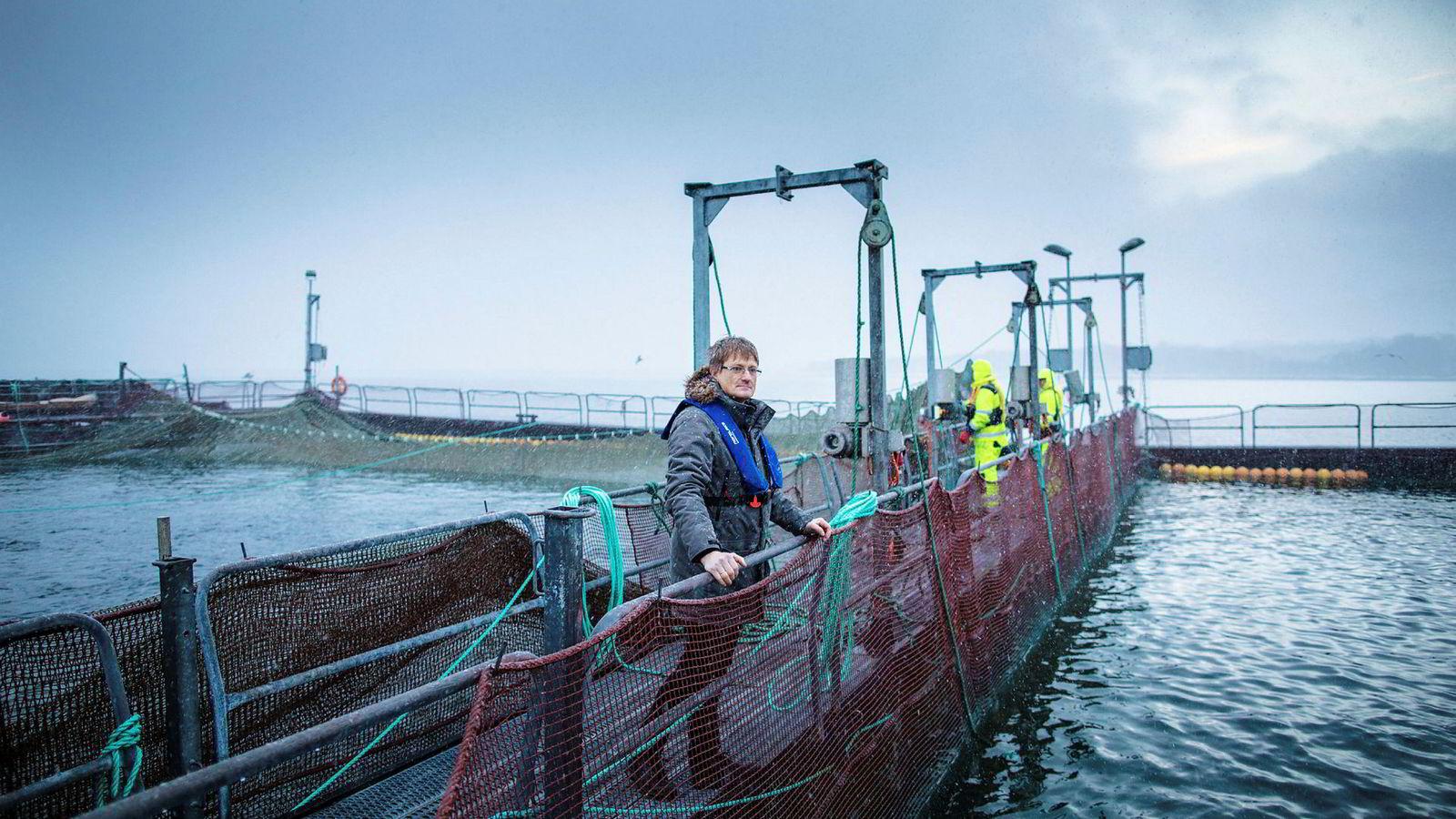Inge Berg er gründer og eier av havbrukskonsernet Nordlaks. Datterselskapet Nordlaks Smolt fikk i starten av oktober besøk av Arbeidstilsynet som har gitt selskapet varsel om fem pålegg.