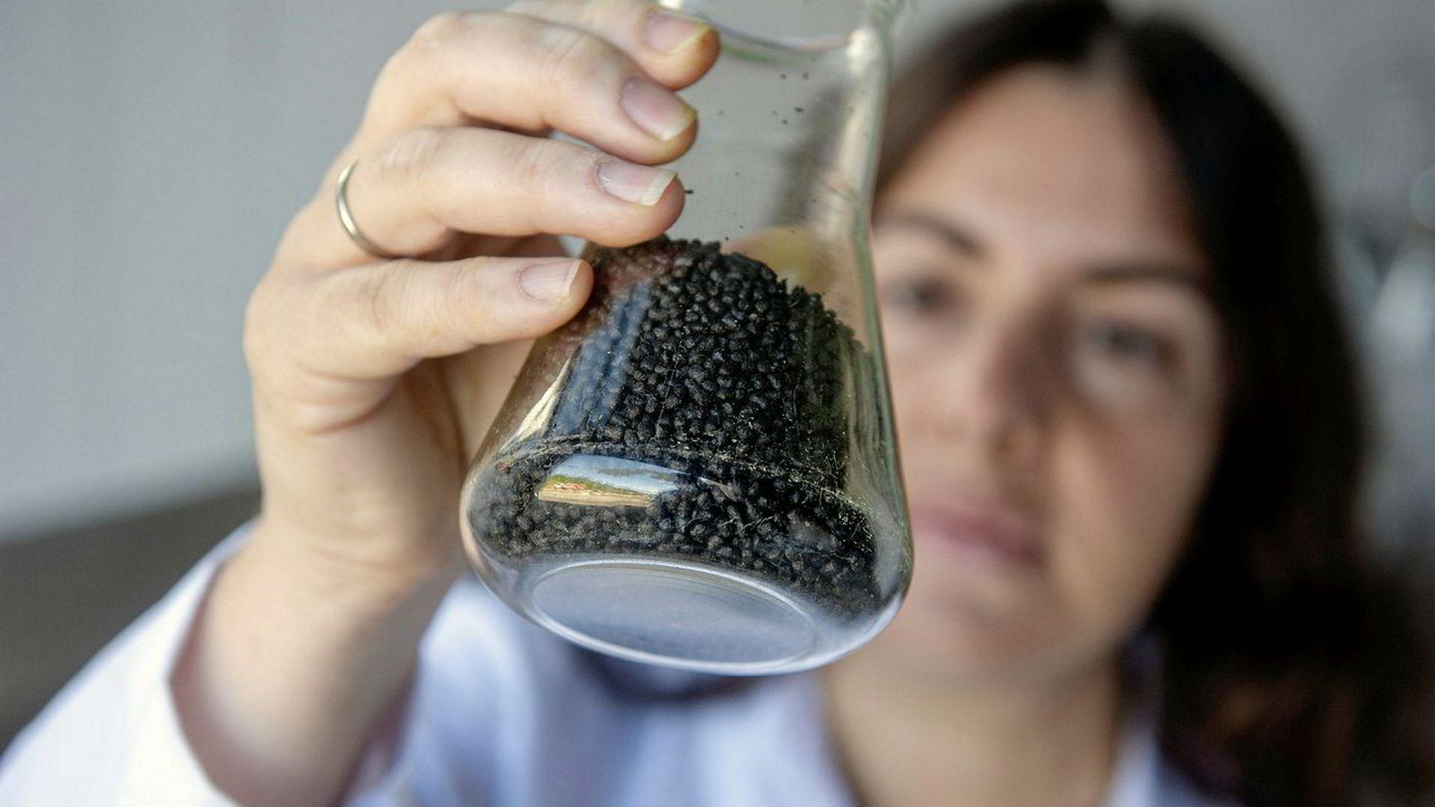 Dette er det grøne gullet: Algeforskar Katerina Kousoulaki ved Nofima i Bergen har laga fiskefôr med 30 prosent tilsett bioråstoff frå mikroalger.
