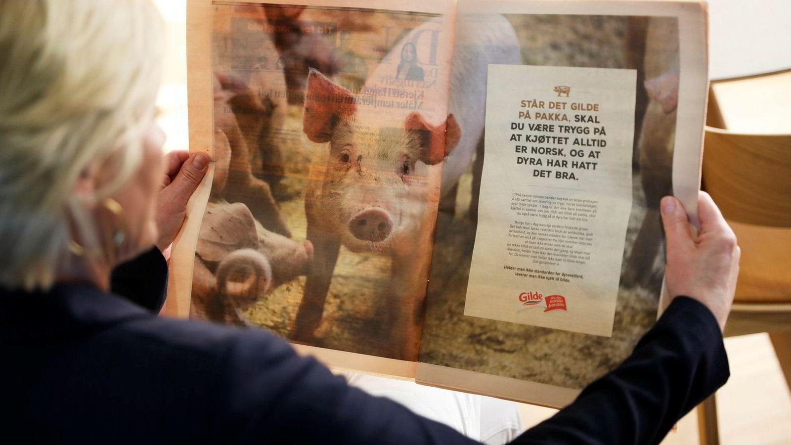 Gilde har provosert forbrukerene med annonse for norsk svinekjøtt. ---