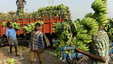 Indiske frukt- og grønnsaksprodusenter blir lurt av mellommenn. Nå forsøker oppstartsselskaper å erstatte dem med apper, kunstig intelligens og analyser av store datamengder.