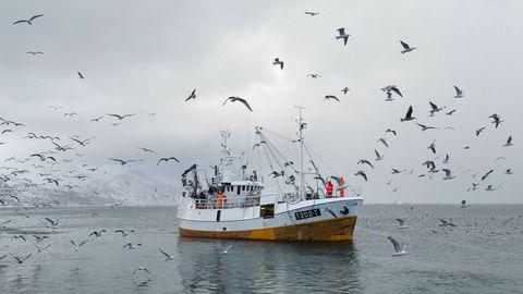 Ekstremvær koster, det har også vi i nord fått merke de siste årene. Blant annet har det vært nødvendig å kompensere norske bønder for store tap. Hva om vi må ta tilsvarende regninger for klimatap i fiskeriene?
