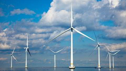 Vestas må si opp 590 ansatte i Tyskland og Danmark. Bildet er fra Lillgrund vindmøllepark utenfor Malmö.