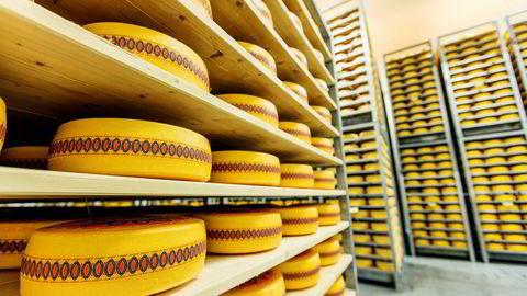 Om et knapt år er det slutt på eksportstøtten for norsk ost.