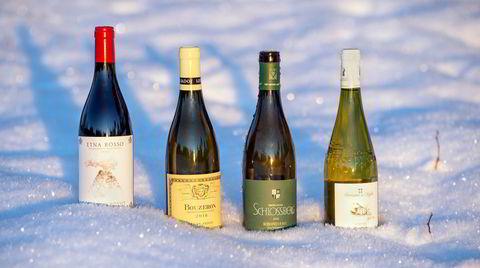 Et utvalg viner fra det store januarslippet, som er bedre enn noensinne, ifølge DNs vinanmelder Merete Bø.