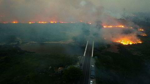 Enorme skogbranner herjer i Pantanal-regionen i Brasil.