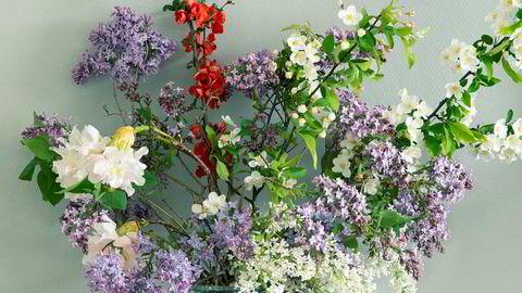 Moderne buskbruk. Syriner står lengre i vasen hvis du fjerner bladverket og snitter stilkene. Her sammen med rododendron, ildkvede og sargenteple – noe lilla, noe hvitt, noe stjålet, noe gitt.