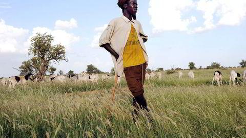 Dersom nedbørsmengdene går ned, vil selvfølgelig ørkenen spre seg. De fleste modeller sier imidlertid at det på sikt vil kunne bli mer, men også mer konsentrert, nedbør i Sahel. Foto: AFP/Seyllou
