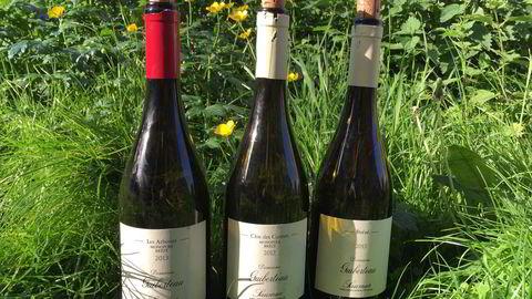 Romain Guiberteaus viner er nå tilgjengelige i Norge for første gang