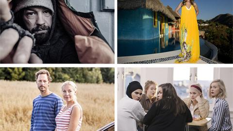 På strømmetoppen i Norge finner vi blant annet TV 2s «Petter Uteligger» (fra venstre øverst), TV3s realityserie «Paradise Hotel» og TVNorges humorserie «Neste sommer» og NRKs «Skam». Foto: TV 2, TVNorge, TV3 og NRK