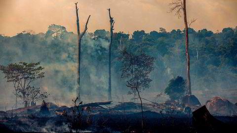 Sterke krefter mener Norge bør presse Brasils president til å verne regnskog ved å utsette ratifisering av avtalen mellom Efta og Mercosur så lenge regnskogen i Amazonas brenner.