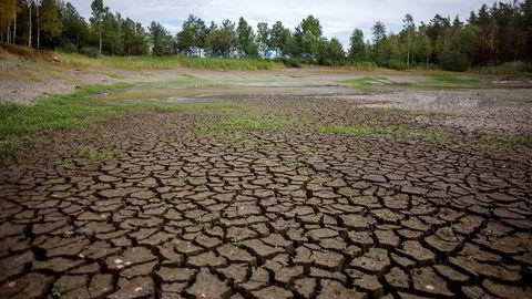 Nøtterøy Golfklubb var så ifjor sommer slik ut etter flere måneder med tørke.