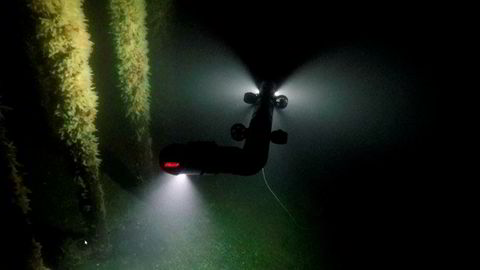 Med den nye generasjon slangerobototer som nå inntar havdypet, kan man i større grad unngå å utsette dykkere for risiko og sikkerheten vil bli bedre. Slangeroboten Eely 500 fra Eelume skal nå testes ut i Trondheimsfjorden.