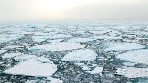 I 2014 krysset bare 22 skip ishavene i øst, ifølge Northern Sea Route Information Office, ned fra 71 i året før. Enorme mengder is gjør ankomsttider for usikre for fraktselskapene. Foto: Istock