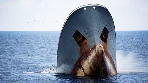 Tråleren «Thunder» sank til 3800 meters dyp utenfor São Tomé og Príncipe 6. april. Foto: Simon Ager, Sea Shepherd Global