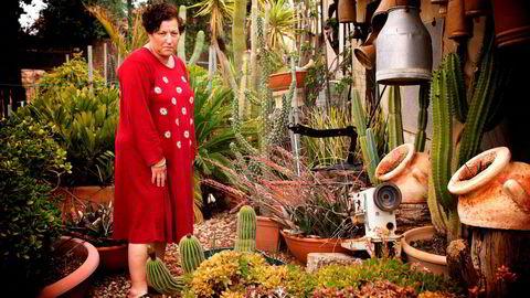 Bracha, Ma´ale Efraim, Vestbredden, 2016. I den israelske bosetningen, Ma´ale Efraim, dyrker Bracha kaktus. – Kaktus er Israels plante, den slår tålmodig rot med lite vann, sier hun i boken. FN har vedtatt at israelske bosetninger på Vestbredden er et klart brudd på folkeretten. Israelske myndigheter er ikke enige.