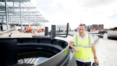 Johan Andreassen og Atlantic Sapphire skal bygge verdens største landbaserte oppdrettsanlegg for laks på sydspissen av Florida. Nå har byggearbeidene forstyrret fisken, og 200.000 laks må nødslaktes.