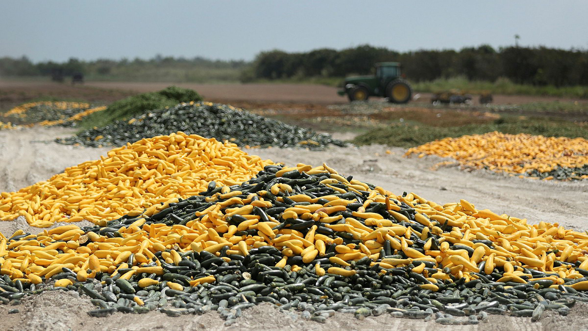 FLORIDA CITY, FLORIDA - APRIL 01: A pile of zucchini and squash is seen after it was discarded by a farmer on April 01, 2020 in Florida City, Florida. Many South Florida farmers are saying that the coronavirus pandemic has caused them to have to throw crops away due to less demand for produce in stores and restaurants. (Photo by Joe Raedle/Getty Images) x. x.Hauger av ulike typer