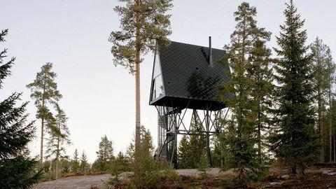 Pan. Fra midten av 1600-tallet slo finner seg ned i de enorme skogsområdene nær dagens svenskegrense, nå kalt Finnskogen. En sentral gud i skogfinsk mytologi var Tapio, finnenes versjon av skogguden Pan.