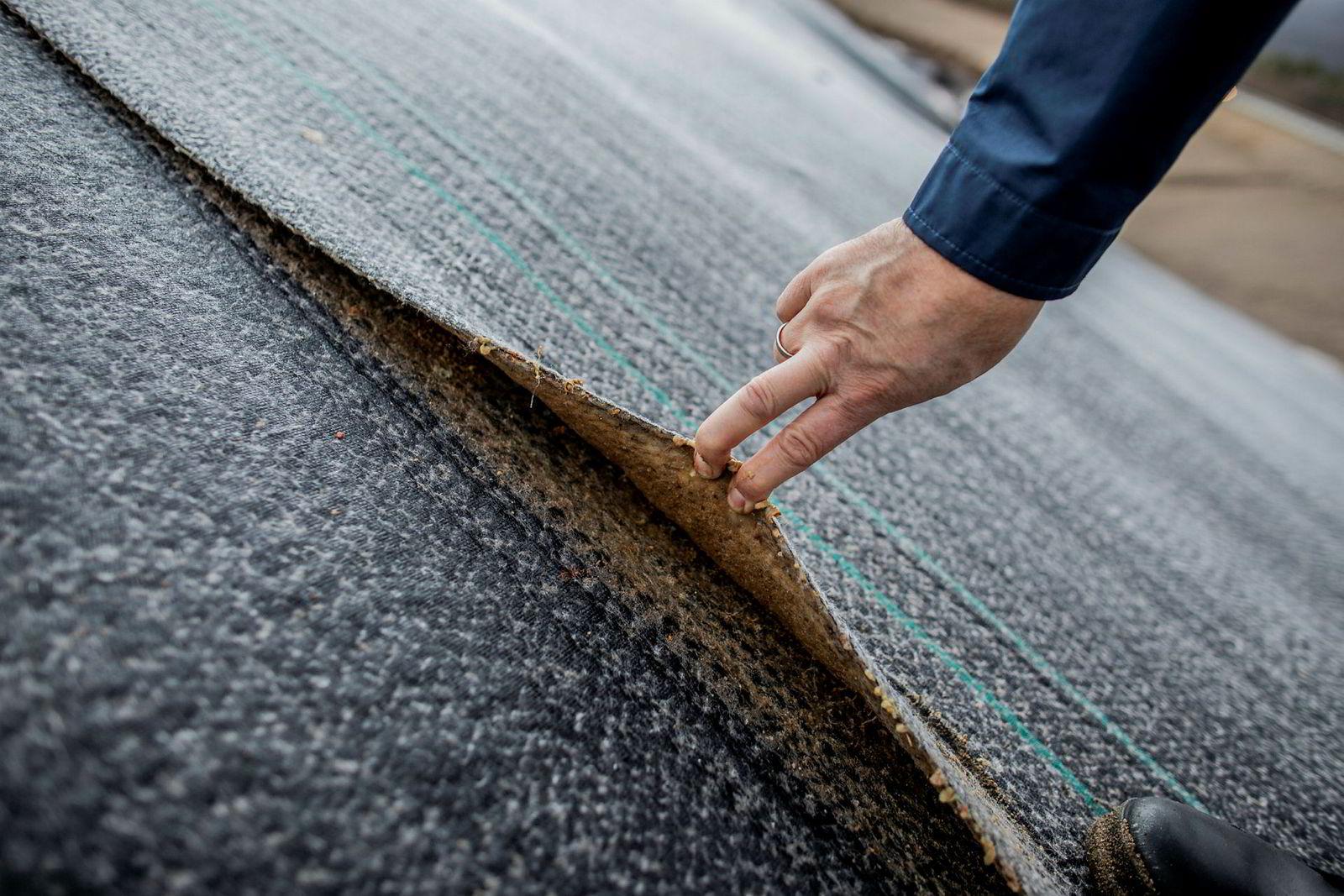 Styreleder Are Lorentsen inspiserer mattene som skal forhindre forurensning fra deponiet.