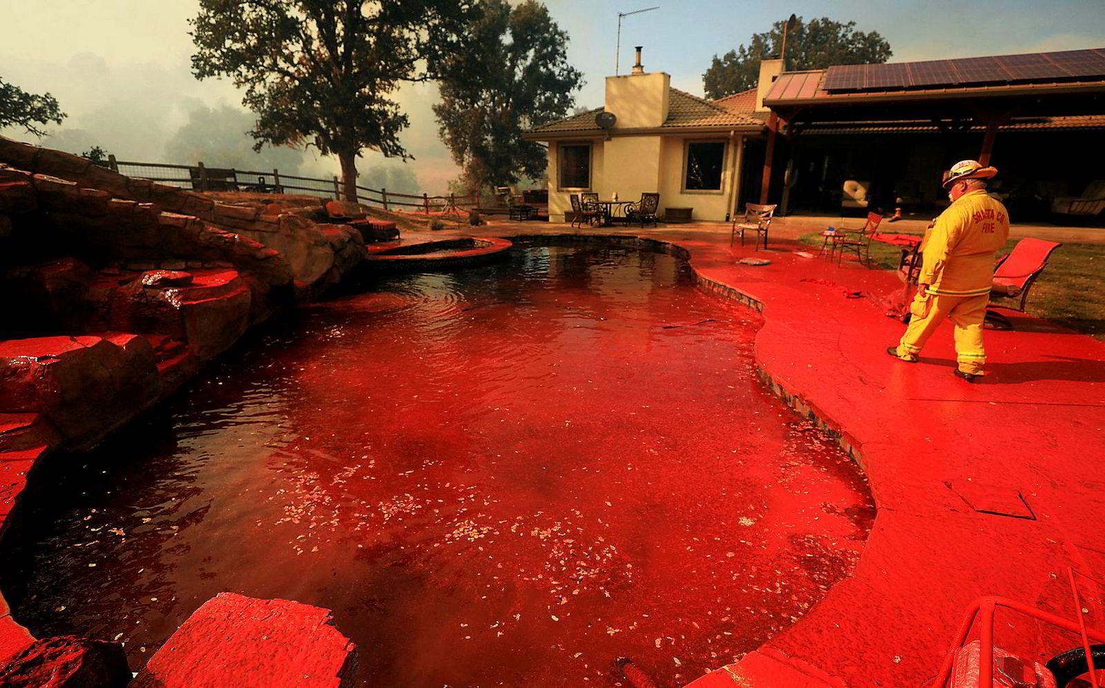 En brannmann vandrer rundt et basseng på en eiendom som er blitt sprayet med flammehemmende middel.